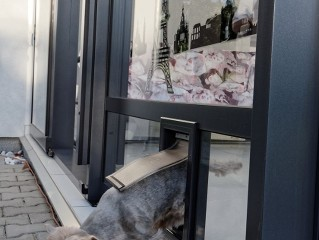 Patio enclosure CORSO can be optimized for your pet