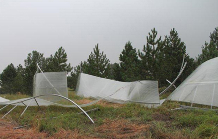 Picture of a mangled Aquashield enclosure after a 70mph wind blew it away